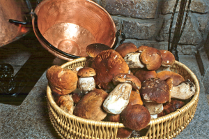 Champignons cuisine traditionnelle Lozère